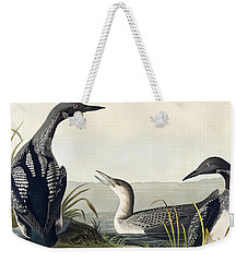 Black Throated Diver  Weekender Tote Bag