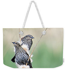 Blackbird Pair Weekender Tote Bag by Mike  Dawson