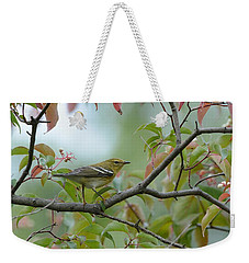 Blackpoll Warbler In The Fall Weekender Tote Bag