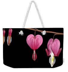 Bleeding Heart Flowers Showing Blooming Stages  Weekender Tote Bag by Phil Cardamone