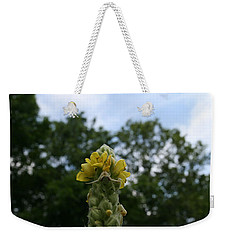 Weekender Tote Bag featuring the photograph Blended Golden Rod Crab Spider On Mullein Flower by Neal Eslinger