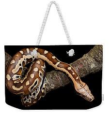 Blood Python Python Brongersmai Weekender Tote Bag