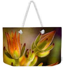Blooming Succulents Iv Weekender Tote Bag