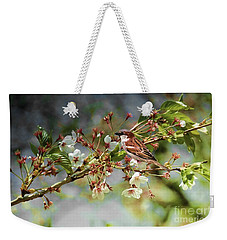 Weekender Tote Bag featuring the photograph Blossoms And Sparrow by Elaine Manley