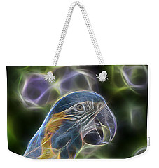 Blue And Gold Macaw  Weekender Tote Bag by Douglas Barnard