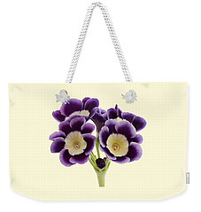 Blue Auricula On A Cream Background Weekender Tote Bag