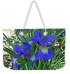 Blue Beauty Weekender Tote Bag by Janice Westerberg