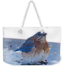 Blue Bird 4 Weekender Tote Bag