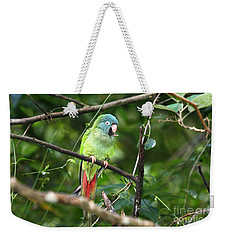 Blue Crowned Parakeet Weekender Tote Bag by James Brunker