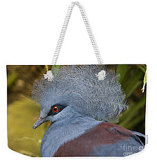 Weekender Tote Bag featuring the photograph Blue-crowned Pigeon by David Millenheft