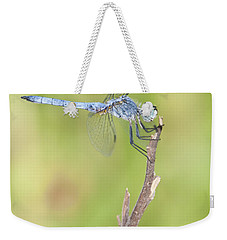 Weekender Tote Bag featuring the photograph Blue Dasher by Bryan Keil