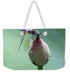 Blue Dragonflies Love Lotus Buds Weekender Tote Bag