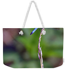 Blue Dragonfly On A Blade Of Grass  Weekender Tote Bag by Chris Flees