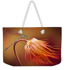 Blue Dragonfly On A Dry Flower Weekender Tote Bag