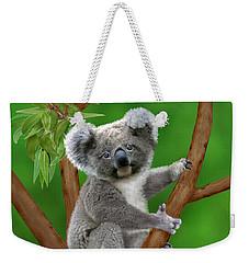 Blue-eyed Baby Koala Weekender Tote Bag