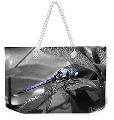 Blue Eyed Dragonfly Weekender Tote Bag