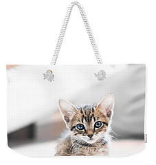 Blue Eyed Kitten Weekender Tote Bag by Shelby  Young