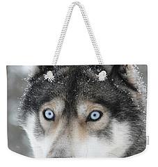 Blue Eyes Husky Dog Weekender Tote Bag