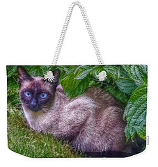 Weekender Tote Bag featuring the photograph Blue Eyes - Signed by Hanny Heim