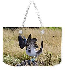Blue-footed Courtship Behavior Weekender Tote Bag by William H. Mullins