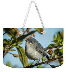 Blue-gray Gnatcatcher Weekender Tote Bag by Jane Luxton