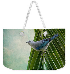 Blue Grey Tanager On A Palm Tree Weekender Tote Bag