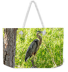 Blue Heron At Rest Weekender Tote Bag