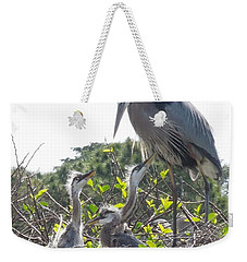 Weekender Tote Bag featuring the photograph Blue Heron Family by Ron Davidson
