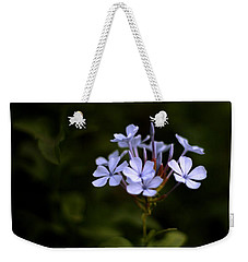 Weekender Tote Bag featuring the photograph Blue Jasmine by Ramabhadran Thirupattur