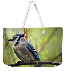 Blue Jay On A Misty Spring Day Weekender Tote Bag by Lois Bryan