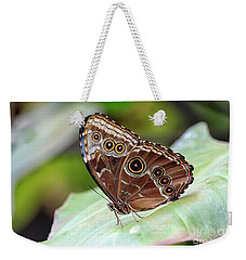 Blue Morpho Butterfly Weekender Tote Bag by Teresa Zieba