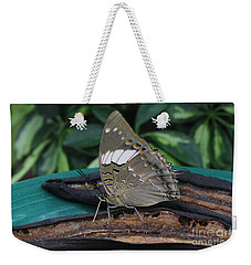 Blue-spotted Charaxes Butterfly Weekender Tote Bag