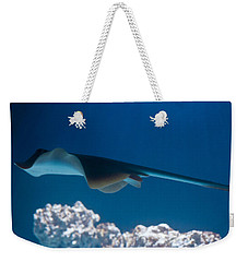 Weekender Tote Bag featuring the photograph Blue Spotted Fantail Ray by Eti Reid