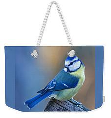 Blue Tit Looking Behind Weekender Tote Bag