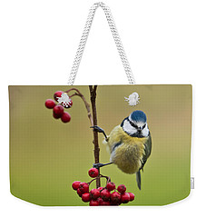 Blue Tit With Hawthorn Berries Weekender Tote Bag by Liz Leyden