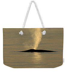 Weekender Tote Bag featuring the photograph Blue Whale At Sunset In Monterey Bay California  2013 by California Views Mr Pat Hathaway Archives