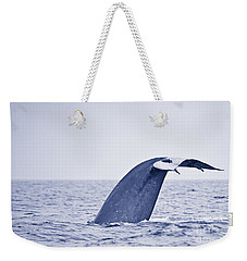 Blue Whale Tail Fluke With Remoras Weekender Tote Bag by Liz Leyden
