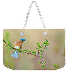 Bluebird Breeze Weekender Tote Bag