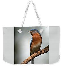 Bluebird- I See You Weekender Tote Bag