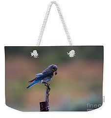 Bluebird Lunch Weekender Tote Bag by Mike  Dawson