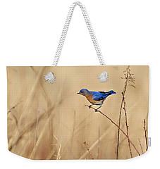 Bluebird Meadow Weekender Tote Bag