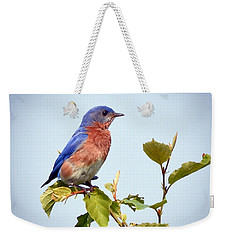 Bluebird On Top Weekender Tote Bag by Kerri Farley