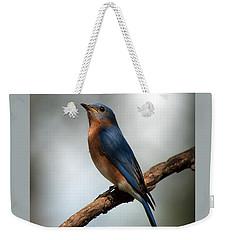 Bluebird -why Yes Weekender Tote Bag