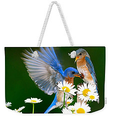 Bluebirds And Daisies Weekender Tote Bag