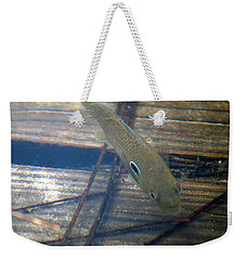 Bluegill On The Hunt Weekender Tote Bag by Kim Pate