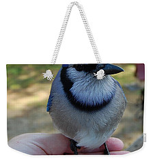 Bluejay Weekender Tote Bag by Mim White