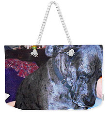 Weekender Tote Bag featuring the photograph Bluto Praying by Kelly Awad