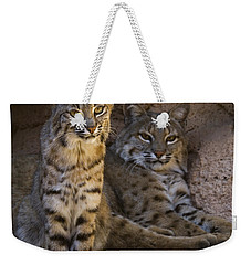 Weekender Tote Bag featuring the photograph Bobcat 8 by Arterra Picture Library