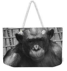 Bonobo Weekender Tote Bag by Dan Sproul
