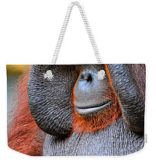 Bornean Orangutan Vi Weekender Tote Bag by Lourry Legarde